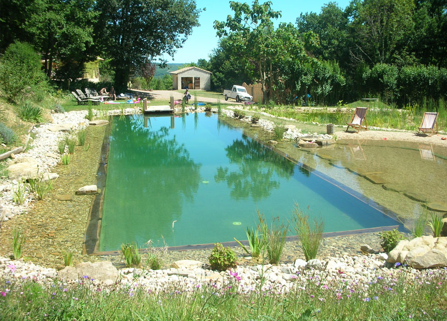 India S First Natural Swimming Pool Builders Bangalore India Based In Bangalore And Having