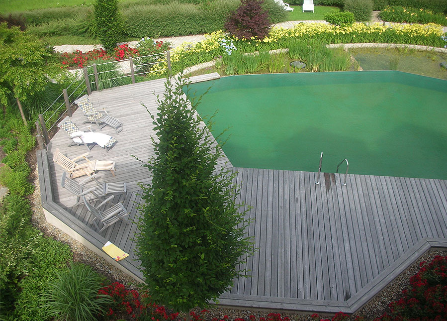 India s first natural swimming pool builders bangalore - Swimming pool construction cost in hyderabad ...